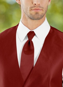 Cravatta bordeaux prezzo scontato online